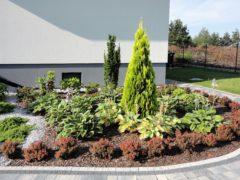 ogród przed domem - metamorfoza