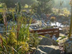 Aranżacja ogrodu w Rybniku