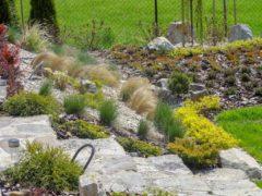Kamień ogrodowy w Raciborzu