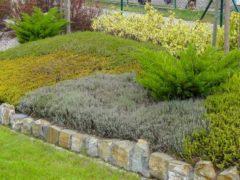Projekty ogrodów Rybnik