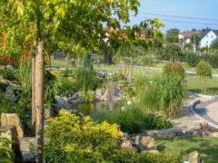 Projektowanie ogrodów Jastrzębie Zdrój