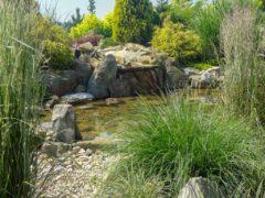 Oczko wodne w ogrodzie Orzesze