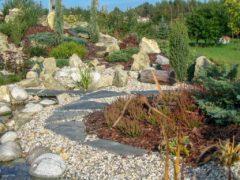 Usługi ogrodnicze w Rybniku