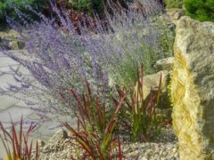 Kamień do ogrodu Orzesze
