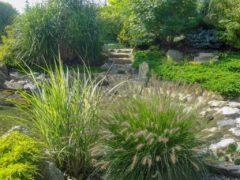 Ogrodnik Orzesze