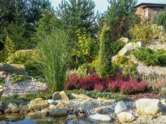 Usługi ogrodnicze Rybnik