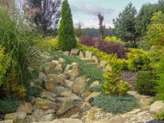 Ścieżki kamienne ogród Orzesze