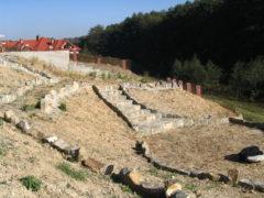 metamorfoza ogrodu w Krakowie