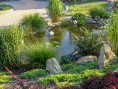 Oczko wodne w ogrodzie Jastrzębie-Zdrój