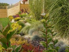 Usługi ogrodnicze Racibórz