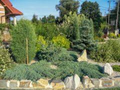 Kompozycje ogrodowe w Jastrzębiu-Zdroju