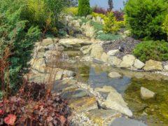 Woda w ogrodzie Orzesze