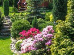 Ogród nowoczesny Kraków