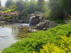 Mini jeziorko w ogrodzie Orzeszu