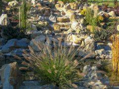 Kamienne płyty ogrodowe